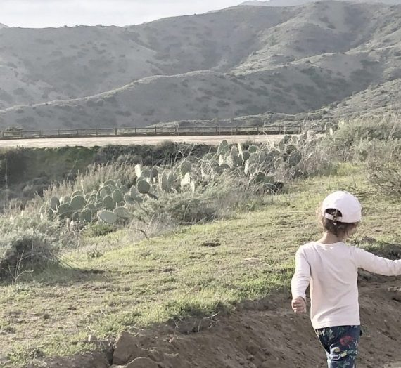 How to train your toddler to hike: 6 essential tips to get them there