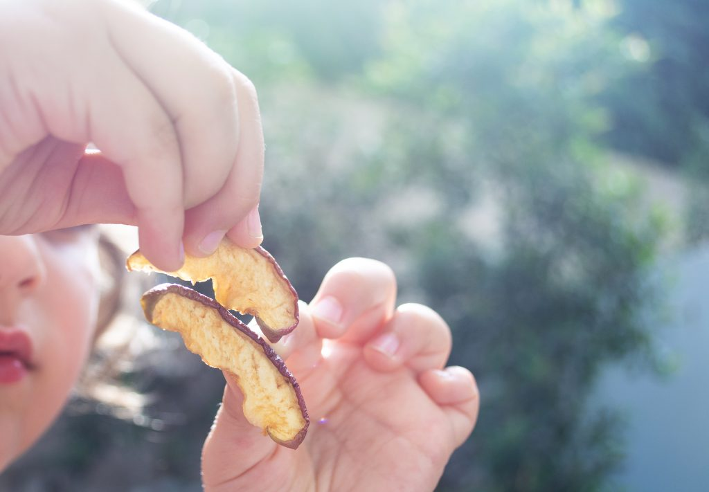 gluten free sugar free snacks for kids on hike