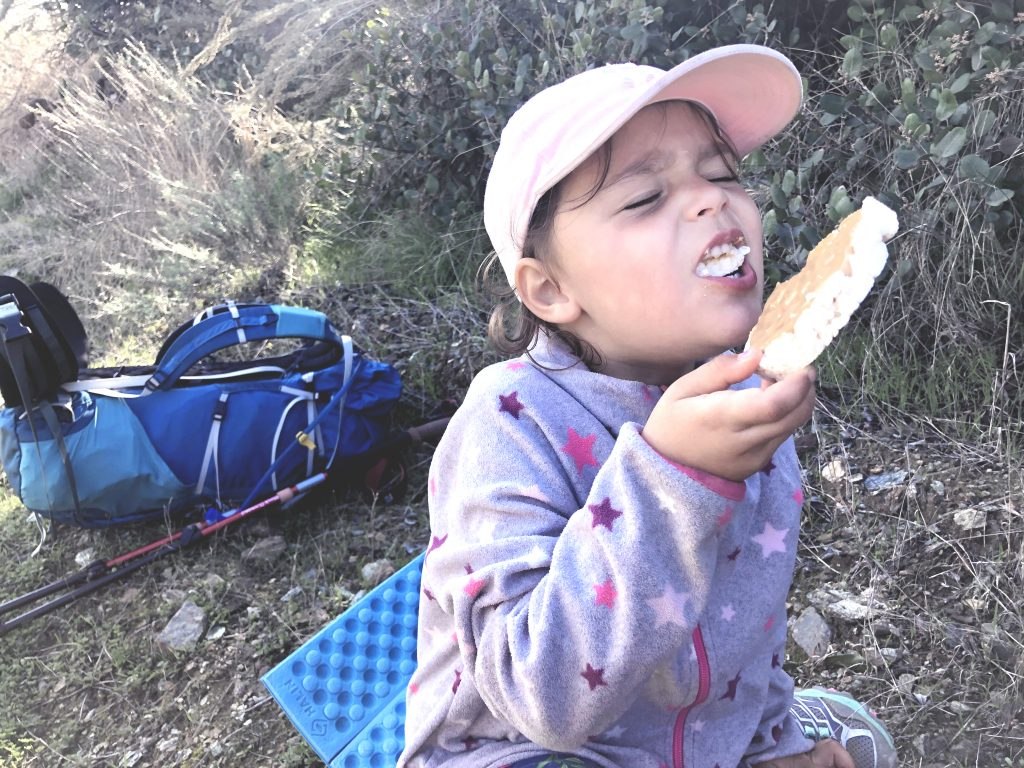 gluten free sugar free snacks for kids hiking